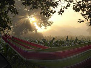 Hängematten Sonnenaufgang Sommer
